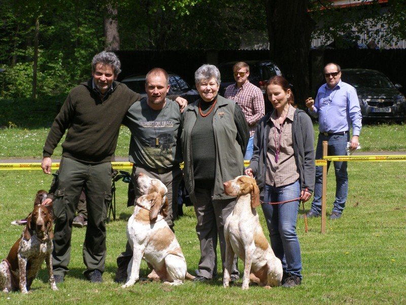 Společné foto italských ohařů krátkosrstých / zleva:  hnědá bělouška fena RUMBA dell ´Oltrepo...Výborná 1, titul CAC, Klubová vítězka, BOS a v závěrečných soutěžích Nejlepší z BOS; bílooranžový 8 1/2 letý ARGENTO di Witigenove...Výborný 1, titul BOV, BOB a v závěrečných soutěžích Nejlepší z BOS; bílooranžový pes ARGO od Zelené naděje...Výborný 1, titul CAC, Klubový vítěz / a jejich majitelů s paní rozhodčí Ahrens Hana, A. - foto Eva Merhoutová